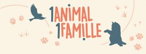 1animal1famille-partenaire-assuropoil