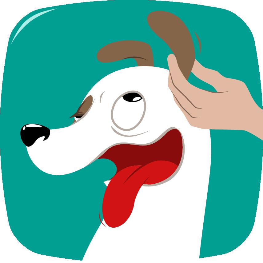 Nettoyer les oreilles chien-bien-être