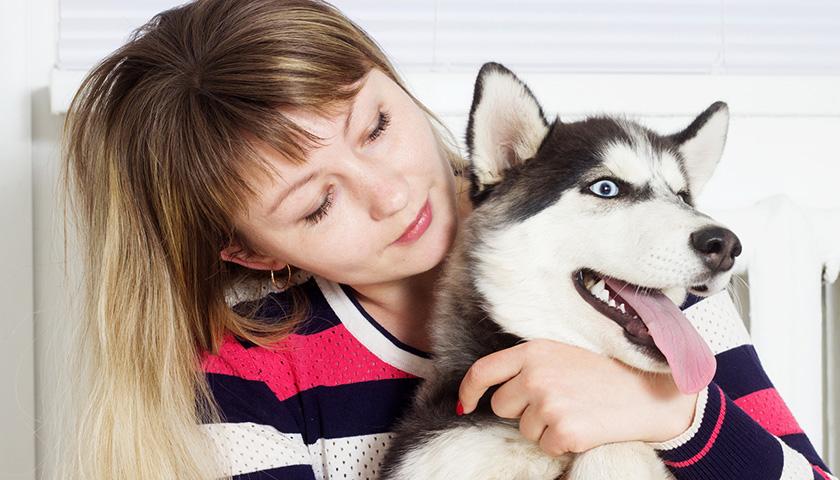 Age humain chien, age chat humain : comment calculer l'âge d'un chien en age humain