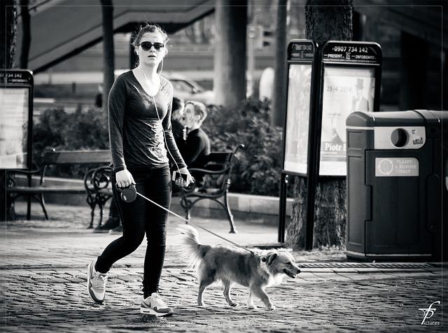 Actualités animaux : promener son chien avec l'application Doggywalk