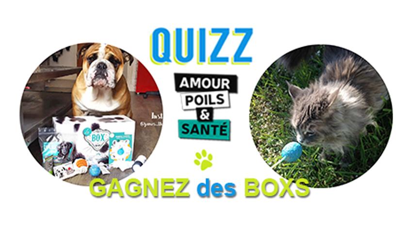Quiz Amour Poils et Santé : Gagnez des boxs pour chien et pour chat avec Assur O'Poil