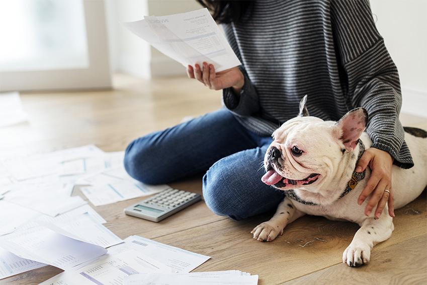 Assur O'Poil remboursement : Les frais vétérinaires remboursés par Assur O'Poil
