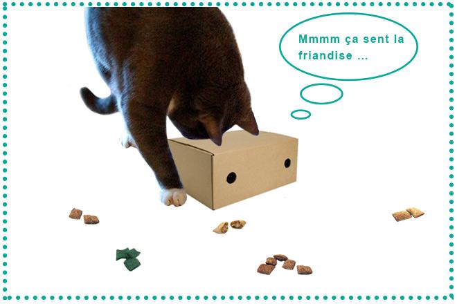 astuces-jouet-pour-chat-blog