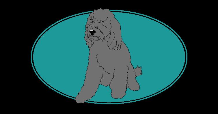 barbet-assuropoil