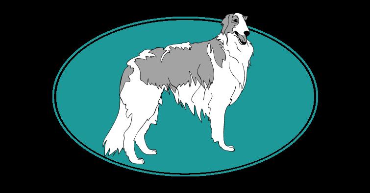 barzoi-levrier-russe-assuropoil