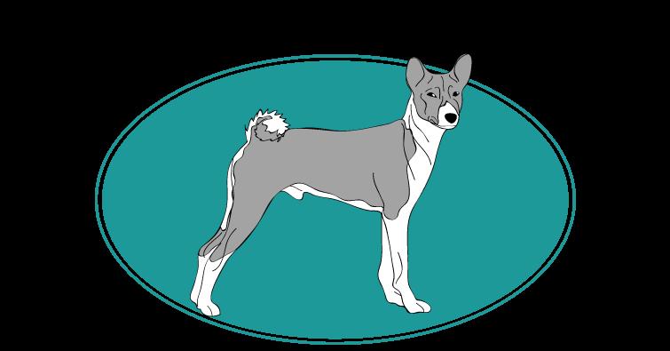 basenji-assuropoil