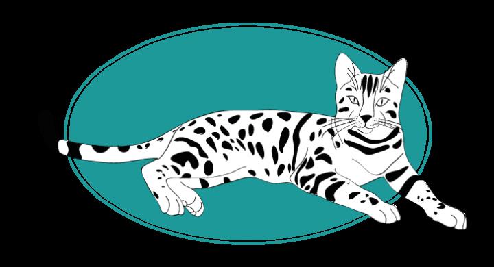 Bengal chat animal races : tout savoir sur les chats