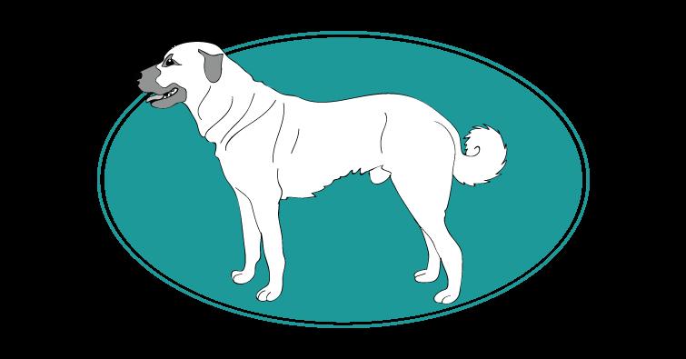 berger-d-anatolie-assuropoil
