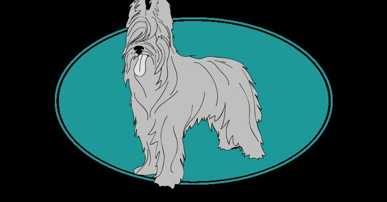 berger-de-brie-assuropoil