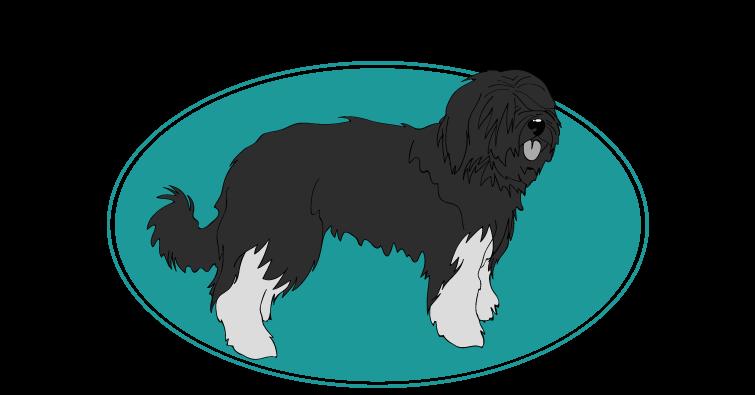 berger-portugais-assuropoil