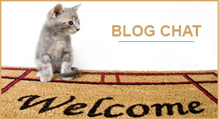 Icone blog chien vers blog chat