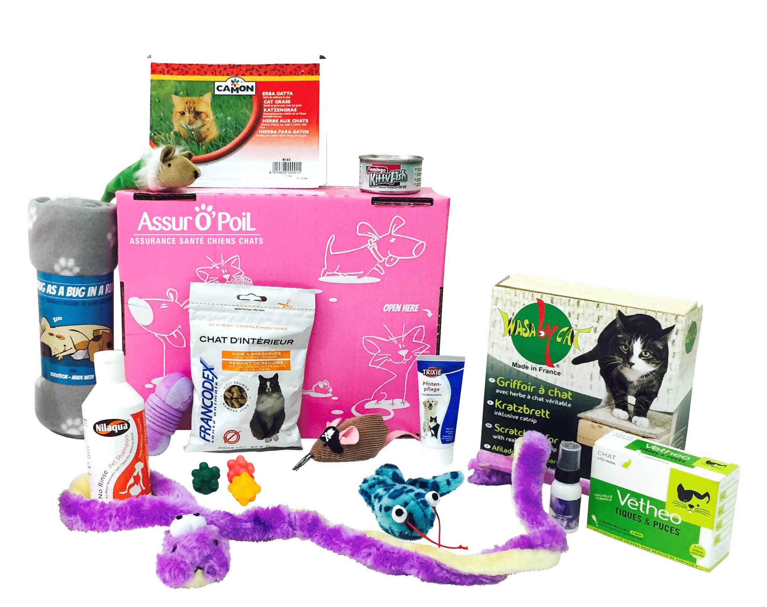 box-animaux-offre-chat