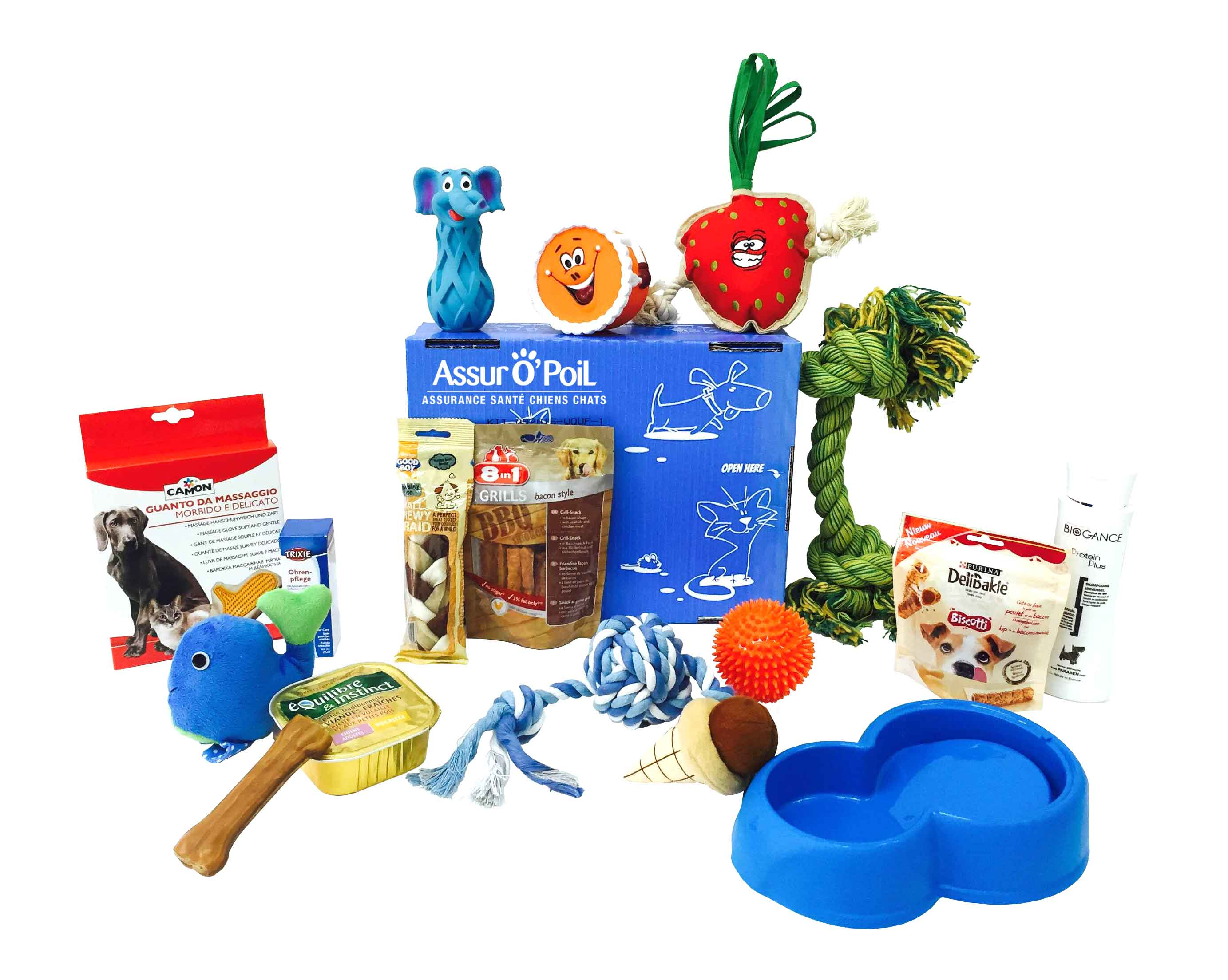 Box chien : offre box animaux