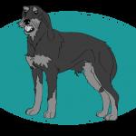 Chien courant italien à poil dur : toutes les races de chien, chien races