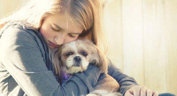 Education chien : Chien peureux, que faire si son chien a peur du tonnerre
