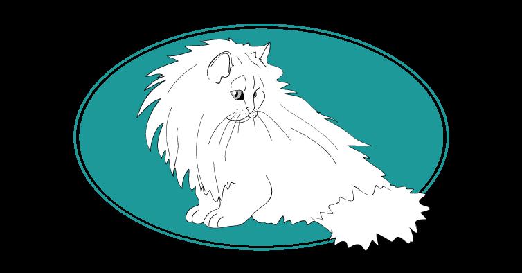 Chinchilla chat animal races : tout savoir sur les chats