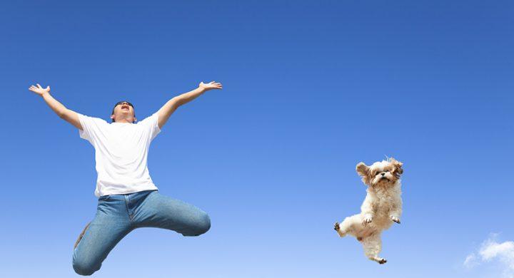 Courir avec son chien Assur O' Poil