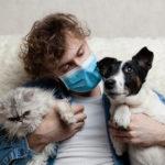 COVID et animaux : bilan un apres la pandémie