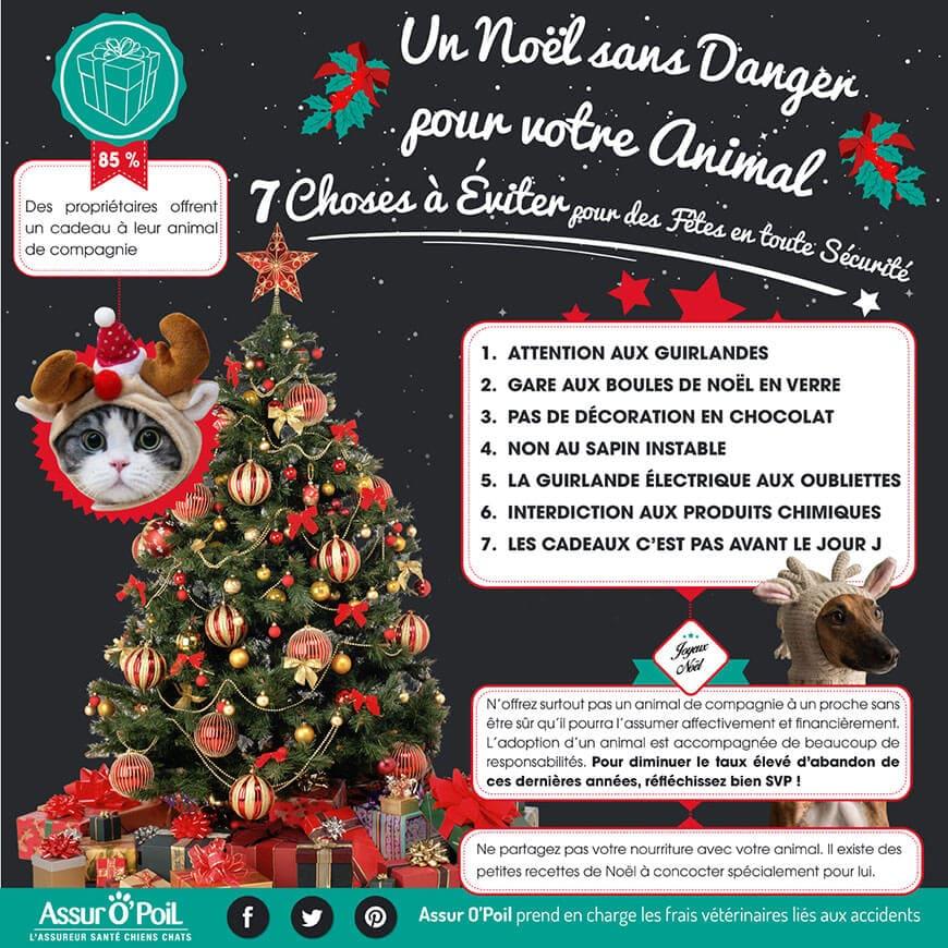Noel des animaux : 5 conseils pour nos chiens et chats, mutuelle animaux : Actualité