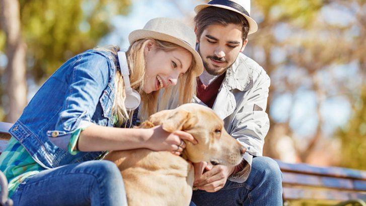 Donner Son Chien A Qui Et Comment Se Séparer De Son Animal