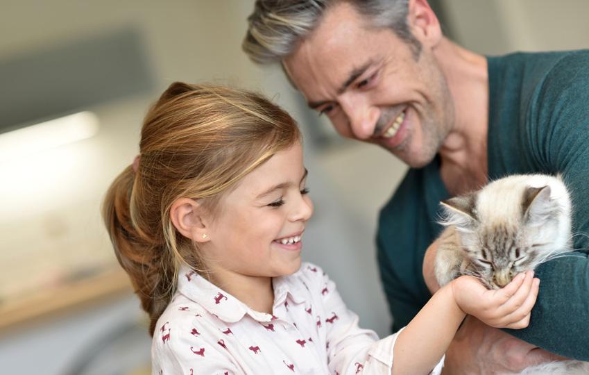 Conseil chat : Famille d'accueil pour chats, comment ça marche