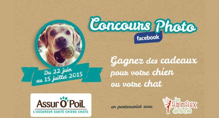 -fetons-l-ete-avec-un-concours-photo-assuropoil-mutuelle-des-animaux