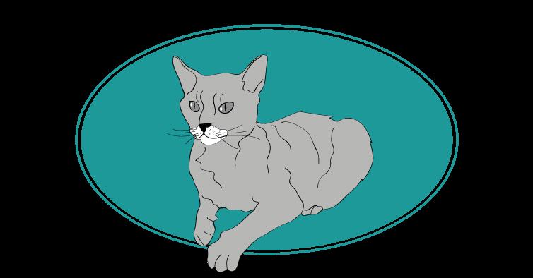 German Rex chat animal races : tout savoir sur les chats