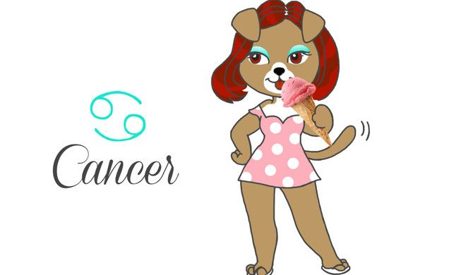 chien-cancer-horoscope-du-mois-assuropoil-assurance-mutuelle-animaux