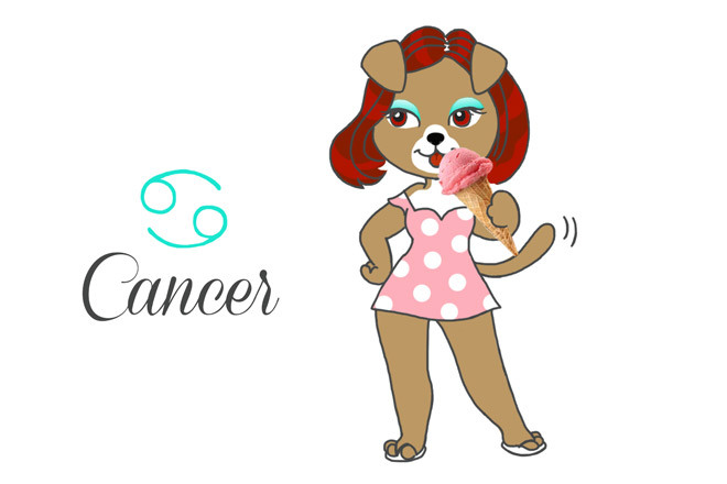 chien-cancer-horoscope-du-mois-assuropoil-assurance-mutuelle-animaux