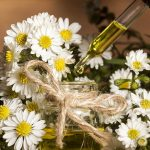 Huiles essentielles pour chien : soigner son animal avec les huiles essentielles chien