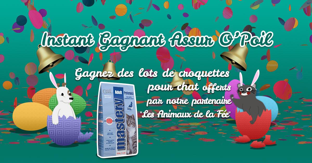 Prolongez Pâques avec Assur O'Poil et gagnez des cadeaux pour votre chat ! jeu concours assuropoil facebook mutuelle chien