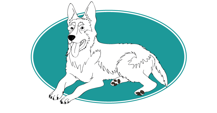 le-berger-allemand-assuropoil
