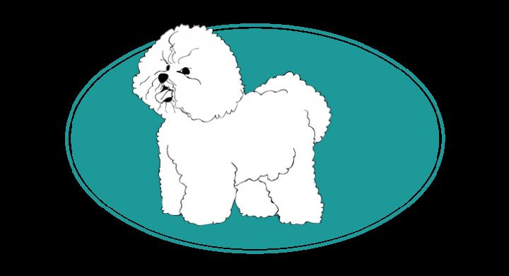 toutes les races de chien description caract re aptitude. Black Bedroom Furniture Sets. Home Design Ideas