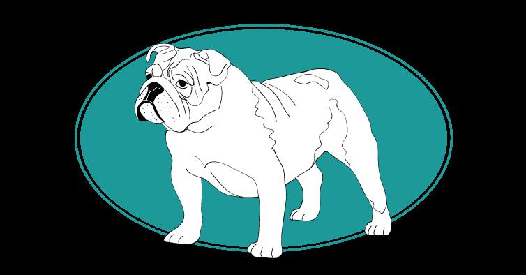 le-bulldog-assuropoil