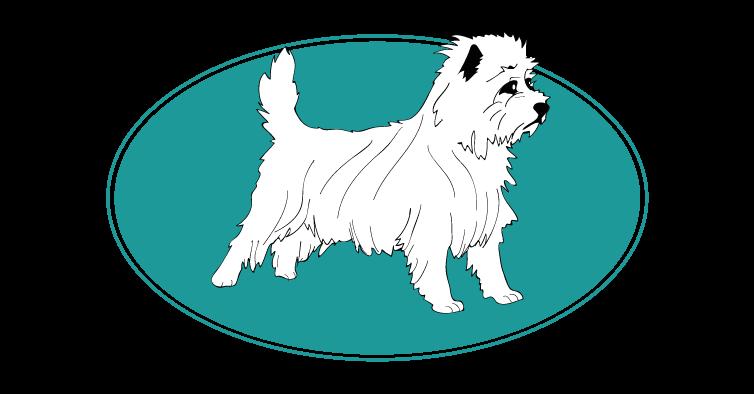 le-cairn-terrier-assuropoil