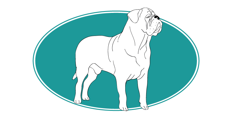 le-dogue-de-bordeaux-assuropoil