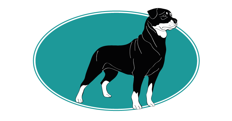 le-rottweiler-assuropoil