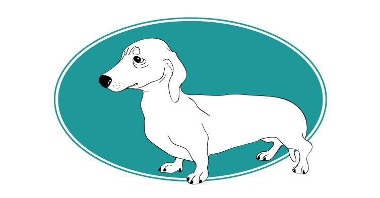 le-teckel-assuropoil