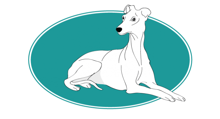 le-whippet-assuropoil
