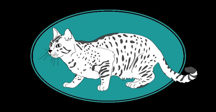 Mau egyptien chat animal races : tout savoir sur les chats