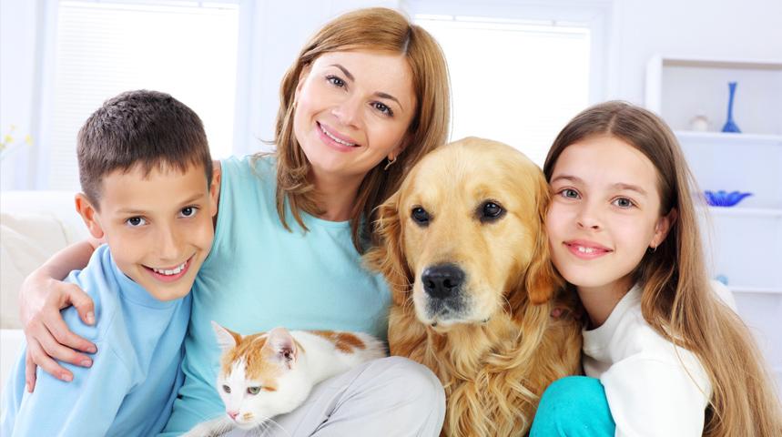 mutuelle pour animaux assur o 39 poil am liore ses garanties. Black Bedroom Furniture Sets. Home Design Ideas