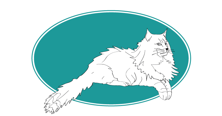 Chat norvégien, animal races : tout savoir sur les chats