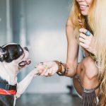 Nounou pour chien : Faire garder son chien