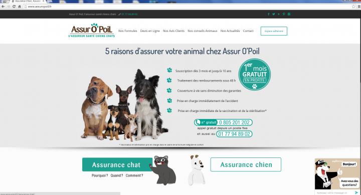 nouveau site assurance chien chat assur o poil