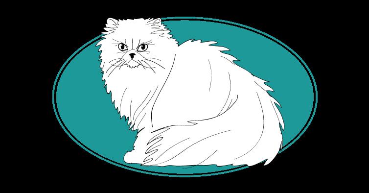 Persan chat animal races : tout savoir sur les chats