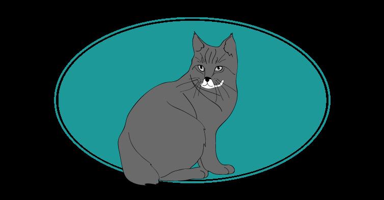 Pixiebob chat animal races : tout savoir sur les chats, pixie-bob