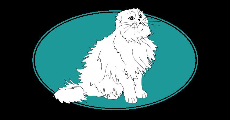 Scottish fold chat animal races : tout savoir sur les chats