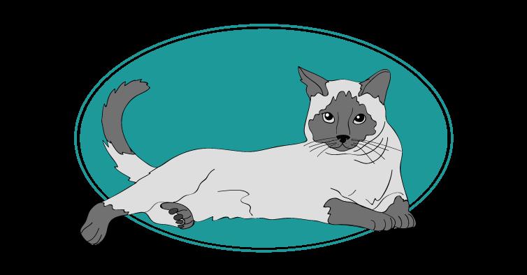 Thaï chat animal races : tout savoir sur les chats
