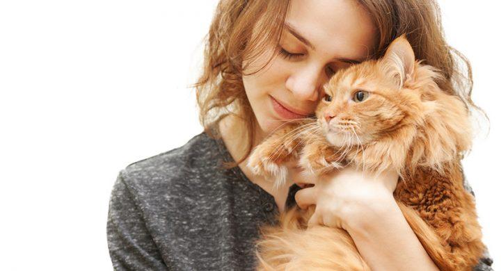 Vivre avec un animal de compagnie, enquete Assur O'Poil