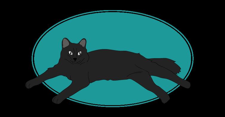York Chocolat chat animal races : tout savoir sur les chats